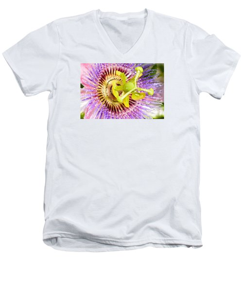 Passiflora The Passion Flower Men's V-Neck T-Shirt by Olga Hamilton