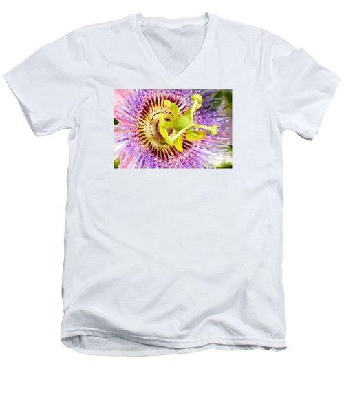 Passiflora The Passion Flower Men's V-Neck T-Shirt