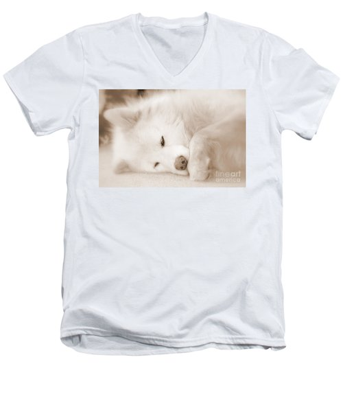 Pawsome Men's V-Neck T-Shirt