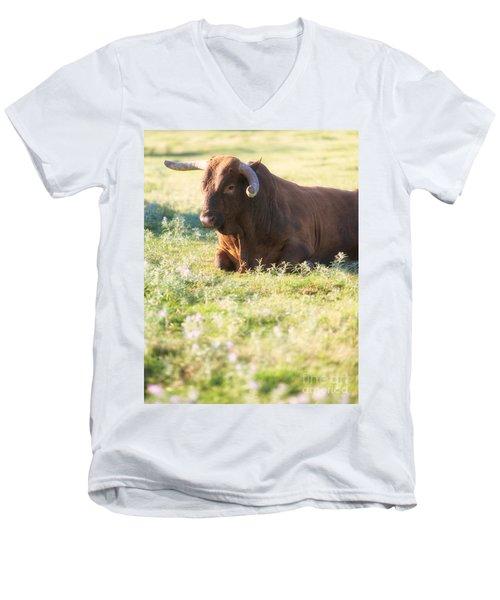 Peaceful Men's V-Neck T-Shirt by Erika Weber