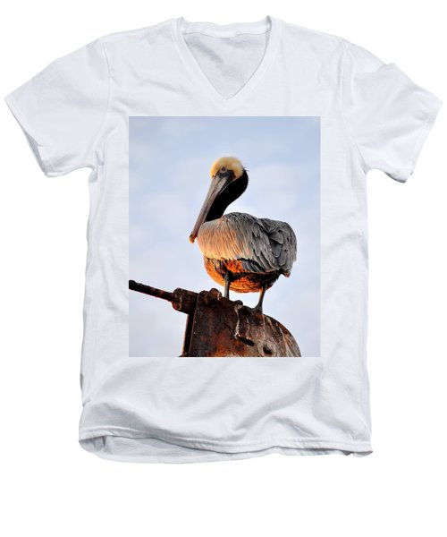 Pelican Looking Back Men's V-Neck T-Shirt