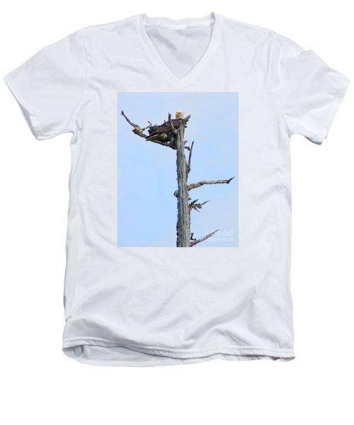 Perched Eagle Men's V-Neck T-Shirt