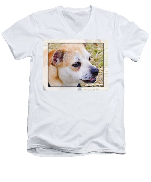 Pets Men's V-Neck T-Shirt