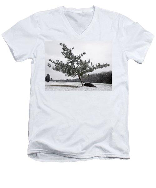 Pine Tree Men's V-Neck T-Shirt by Melinda Fawver