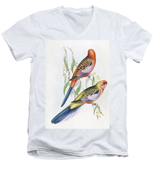Platycercus Adelaidae From The Birds Of Australia Men's V-Neck T-Shirt by John Gould