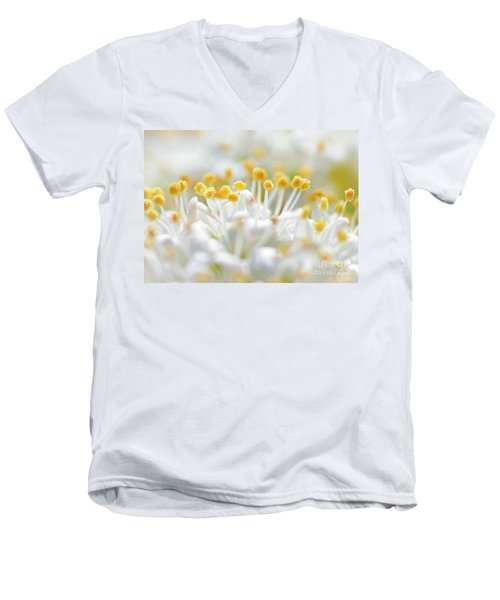 Pollen Men's V-Neck T-Shirt by David Perry Lawrence