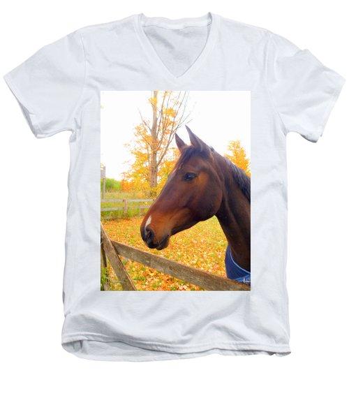 Portrait Of A Beauty Men's V-Neck T-Shirt
