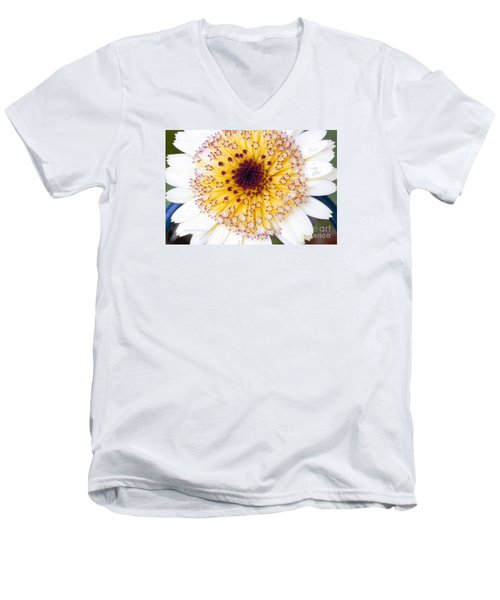 Pot Marigold Citrus Smoothies Men's V-Neck T-Shirt