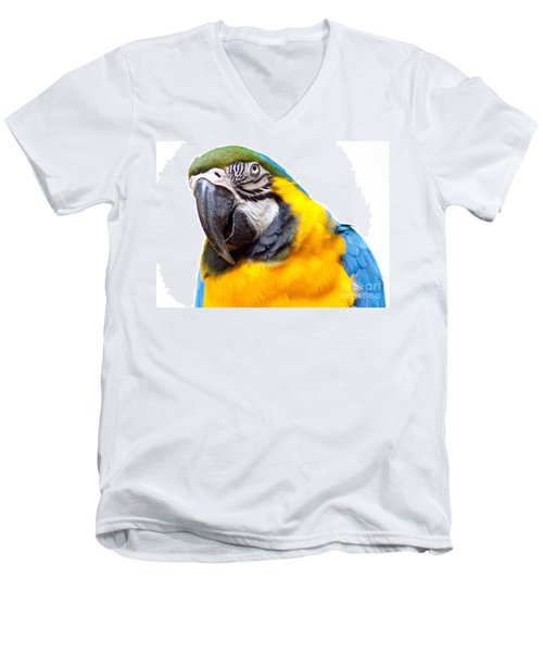 Men's V-Neck T-Shirt featuring the photograph Pretty Bird by Roselynne Broussard