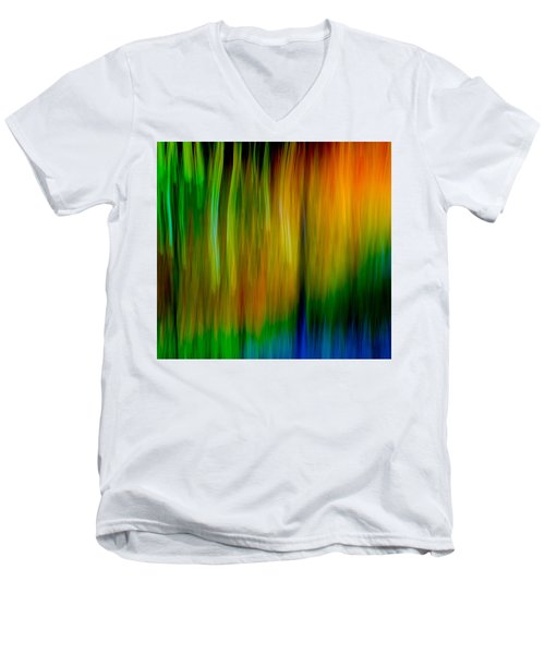 Primary Rainbow Men's V-Neck T-Shirt