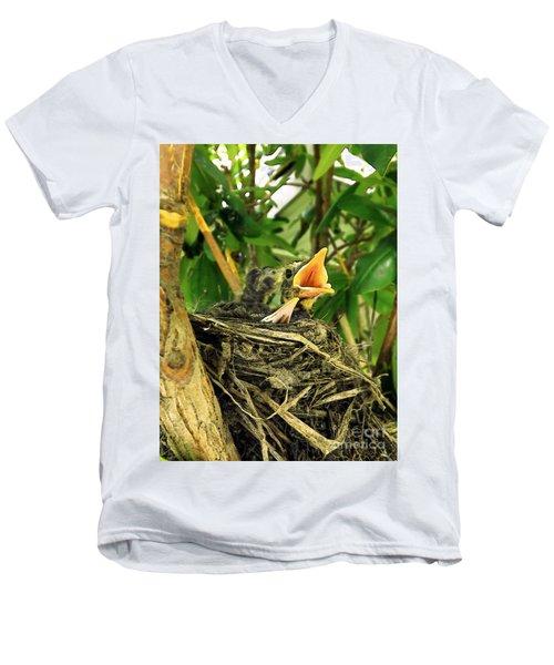 Promises Of A New Day Men's V-Neck T-Shirt