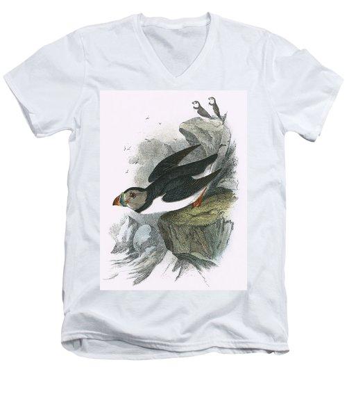 Puffin Men's V-Neck T-Shirt