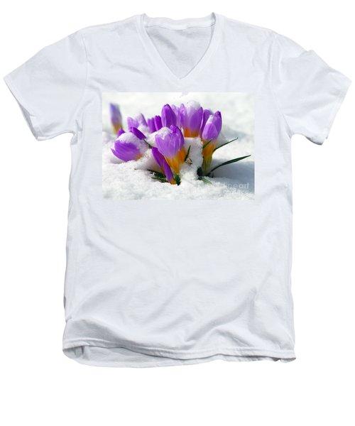 Purple Crocuses In The Snow Men's V-Neck T-Shirt