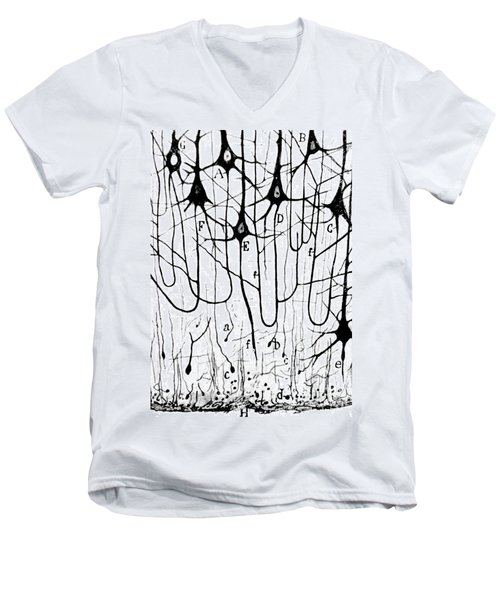 Pyramidal Cells Illustrated By Cajal Men's V-Neck T-Shirt