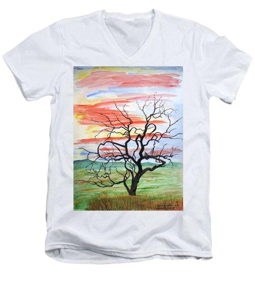Rainbow Mesquite Men's V-Neck T-Shirt
