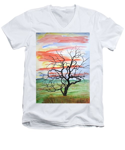 Rainbow Mesquite Men's V-Neck T-Shirt
