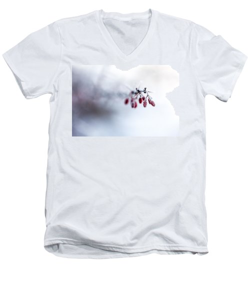 Reaching Out Men's V-Neck T-Shirt by Aaron Aldrich