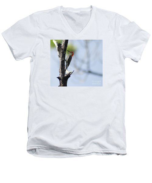 Red-bellied Woodpecker Men's V-Neck T-Shirt