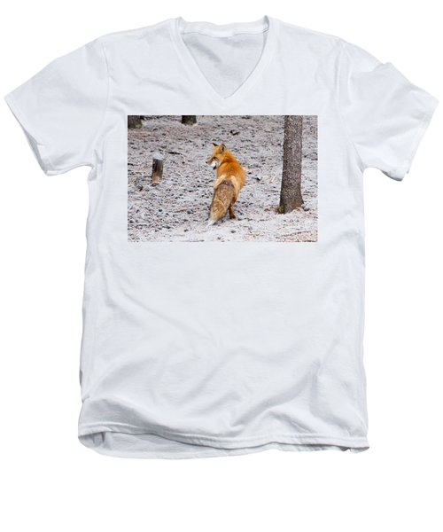 Men's V-Neck T-Shirt featuring the photograph Red Fox Egg Thief by John Wadleigh