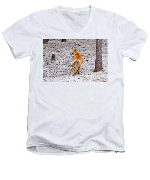 Red Fox Egg Thief Men's V-Neck T-Shirt