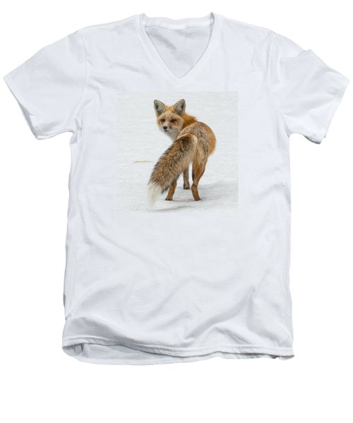 Red Fox Of Silver Gate Men's V-Neck T-Shirt by Yeates Photography
