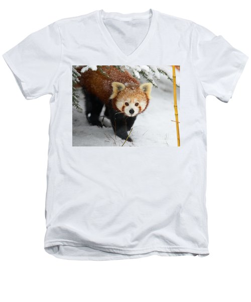 Red Panda In The Snow Men's V-Neck T-Shirt