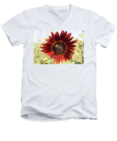 Red Sunflower And Bee Men's V-Neck T-Shirt