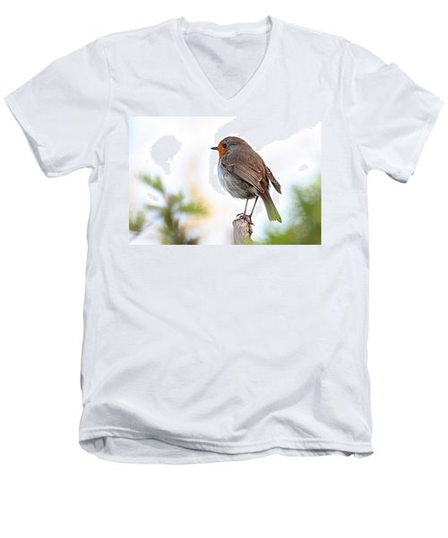 Robin On A Pole Men's V-Neck T-Shirt