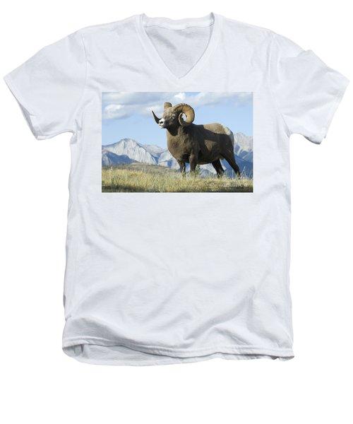 Rocky Mountain Big Horn Sheep Men's V-Neck T-Shirt by Bob Christopher