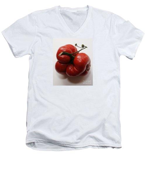 Roys Tomato Men's V-Neck T-Shirt