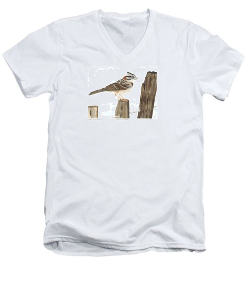 Rufous-collared Sparrow Men's V-Neck T-Shirt by Cindy Hitchcock