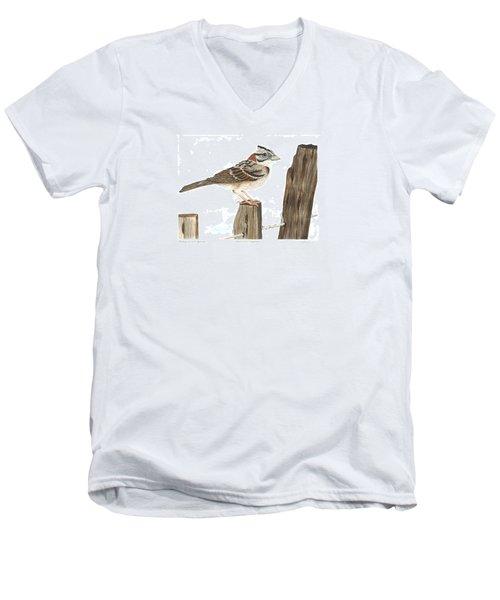 Rufous-collared Sparrow Men's V-Neck T-Shirt