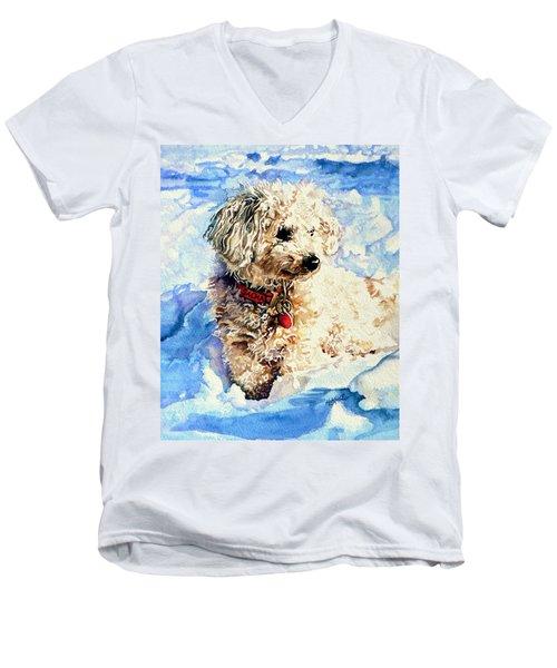 Sacha Men's V-Neck T-Shirt