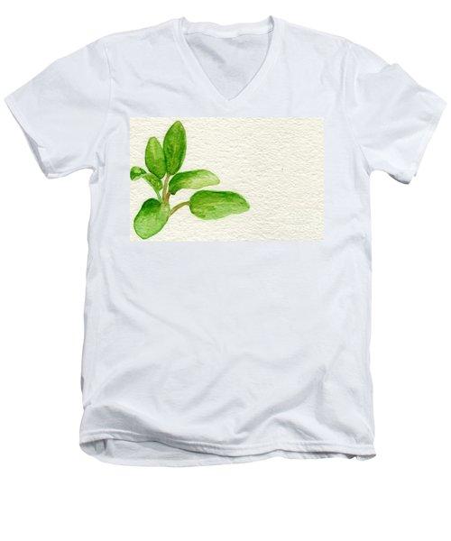 Sage Men's V-Neck T-Shirt by Annemeet Hasidi- van der Leij