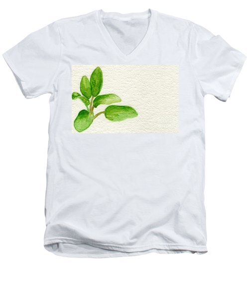 Sage Men's V-Neck T-Shirt