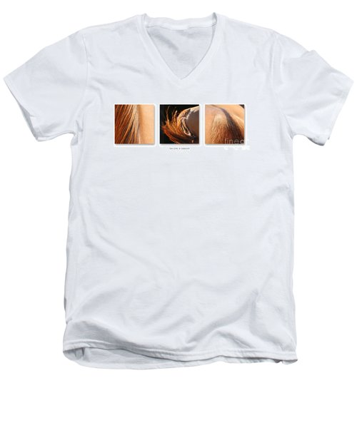Salon D'equus Dark Men's V-Neck T-Shirt