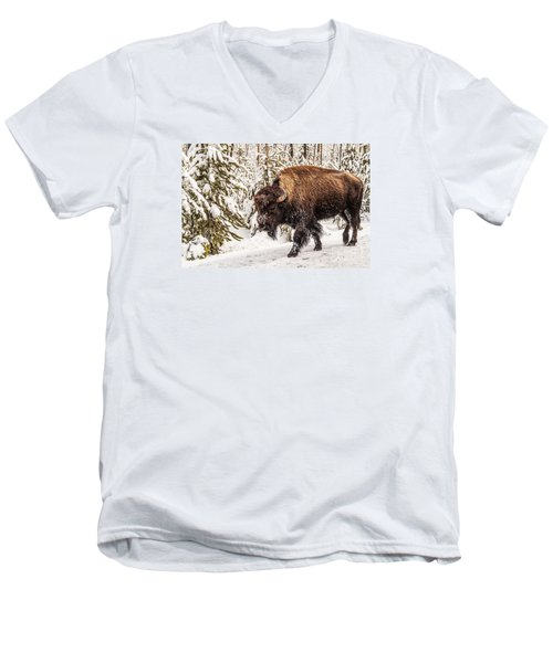 Scary Bison Men's V-Neck T-Shirt by Sue Smith