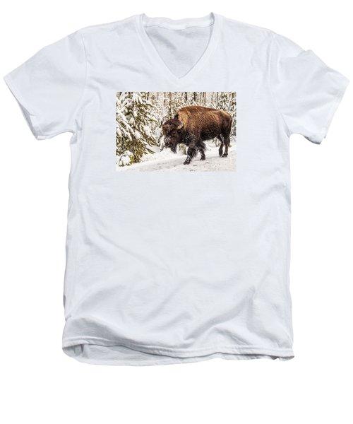 Scary Bison Men's V-Neck T-Shirt