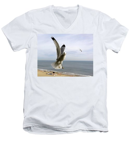 Inquisitive Seagull Men's V-Neck T-Shirt