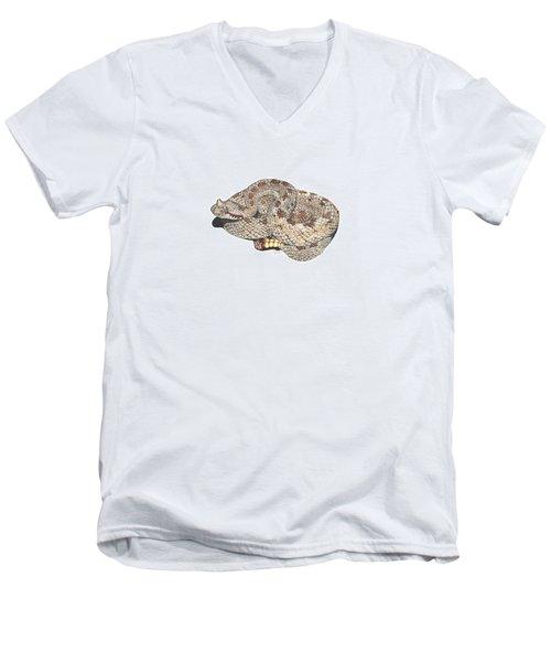 Sidewinder Men's V-Neck T-Shirt by Cindy Hitchcock