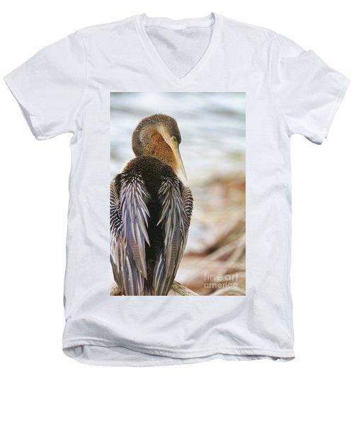 Siesta Pose Men's V-Neck T-Shirt