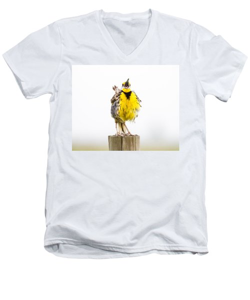 Singing Meadowlark 2 Of 3 Men's V-Neck T-Shirt