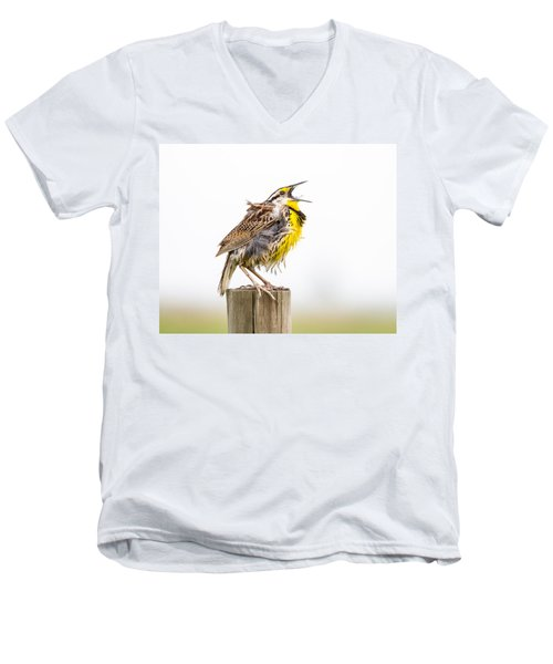 Singing Meadowlark 3rd Of 3 Men's V-Neck T-Shirt