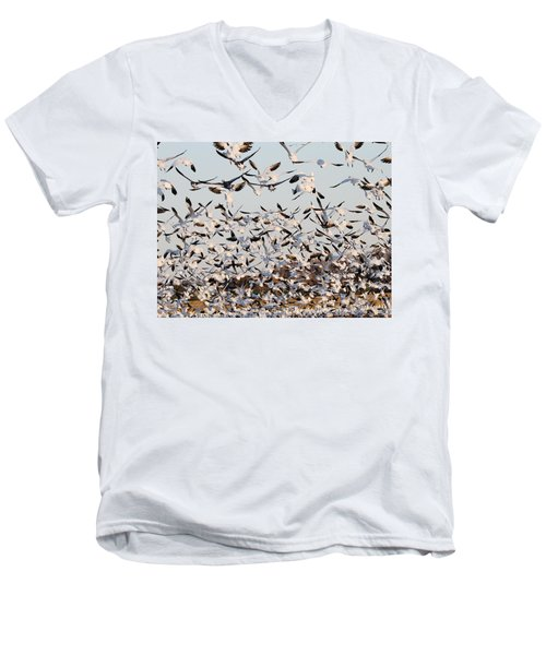 Snow Geese Takeoff From Farmers Corn Field. Men's V-Neck T-Shirt