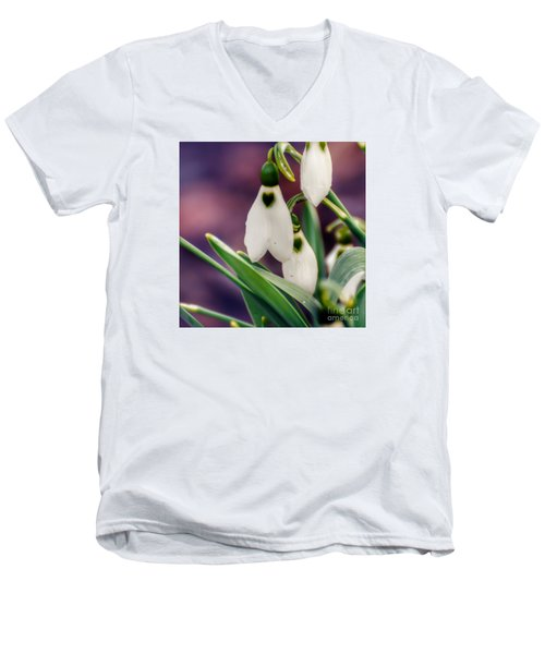 Snowdrops Men's V-Neck T-Shirt