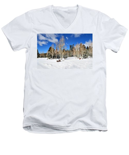 Snowy Aspen Grove Men's V-Neck T-Shirt