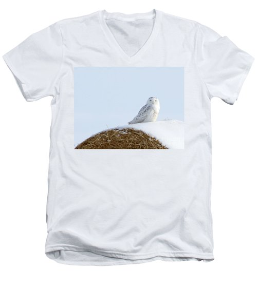Men's V-Neck T-Shirt featuring the photograph Snowy Owl by Alyce Taylor
