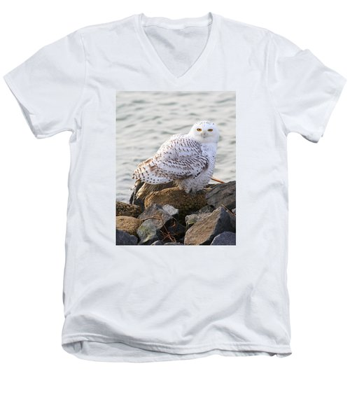 Snowy Owl In New Jersey Men's V-Neck T-Shirt