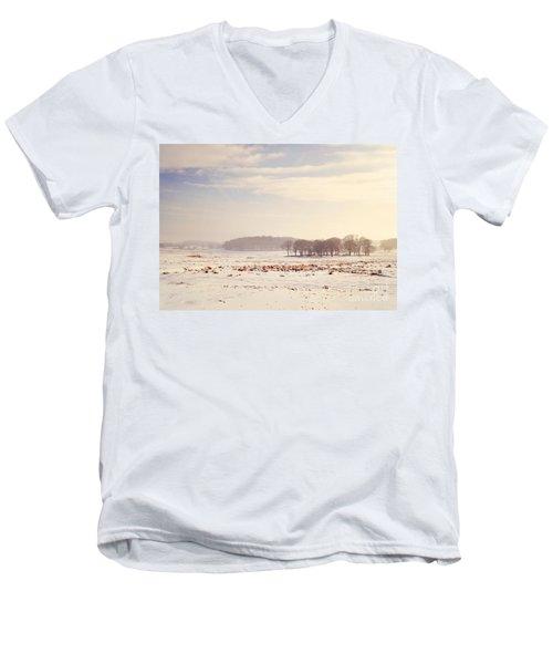 Snowy Valley Men's V-Neck T-Shirt
