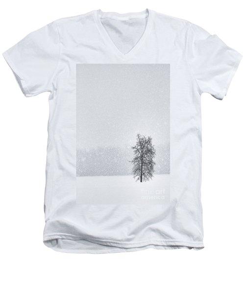 Solitude II Men's V-Neck T-Shirt